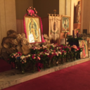 Our Lady of Guadalupe 2015 photo album